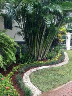 Palm Trees Landscaping Front Yard Landscaping Landscaping Ideas Farm Houses Big Houses Driveway Design Front Yards Casa Linda Mansions Homes Palm Trees Landscaping, Front House Landscaping, Front Garden Landscape, Florida Landscaping, Tropical Landscaping, Tropical Garden, Backyard Landscaping, Landscaping Ideas, Backyard Garden Design