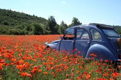 2cv convertibles for hire for excursions in Provence