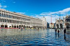 Venice, Italy   | 10 places to appreciate before they vanish | MNN - Mother Nature Network