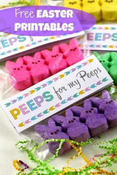 Peeps for my Peeps http://www.allkindsofthingsblog.com/2015/03/peeps-treats-for-easter.html