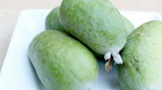 The feijoa is the fruit of Acca sellowiana, an evergreen shrub or small tree, m in height. It comes from the highlands of southern Brazil, parts of Colom. Garden Plants, Fruit, Vegetables, Youtube, Vegetable Recipes, Youtubers, Veggies, Youtube Movies