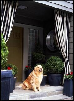 Oh my, Black & White for the front porch! I am now wanting it all!