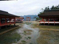 Tempio shintoista!