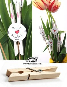 Bunny clothes pin plant decoration
