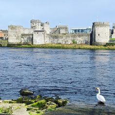 The Shannon is longer than you think. - Longford Leader