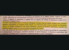 Albert Hofmann - Elogio del puro contemplare