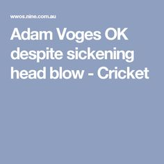Adam Voges OK despite sickening head blow - Cricket
