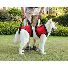 Fuloon Medical Dog Rear Carrier / Lifting Harness / Dog Lifting Aid Medical Dog Front Carrier Harness >>> Check this awesome product by going to the link at the image.