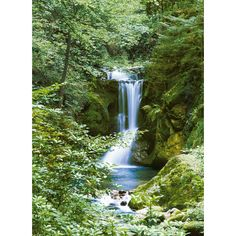 Found it at Wayfair - Ideal Decor Waterfall Wall Mural