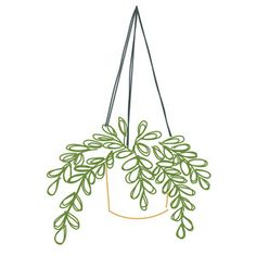 Silhouette Design Store: Sketched Hanging Plant Silhouette Design Store - Home Pencil Art Drawings, Doodle Drawings, Easy Drawings, Doodle Art, Cactus Drawing, Plant Drawing, Bullet Journal Writing, Bullet Journal Ideas Pages, Bullet Journal Inspiration