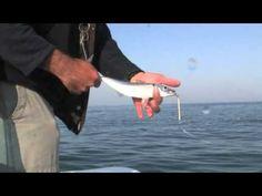 Vídeo de pesa de introducción a la pesca spinning en el mar | Revista de pesca deportiva – Coto de PeZca