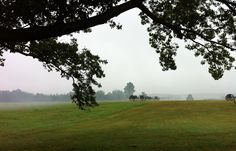 At Henry Hill on the 151st Anniversary of First Manassas/Bull Run