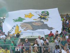 Ralph's Mob (Tampa Bay Rowdies) #NASL (D2) #coyr #tifo