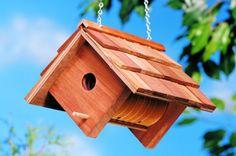 Vogelhaus selber bauen - DIY Bauanleitung und 40 Ideen für Sie