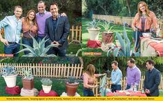 "SET YOUR DVR'S FOR THURSDAY! 10am pst ""Home & Family"" on Hallmark Channel.  Shirley Bovshow presents, ""Amazing Agaves,"" a remarkably versatile plant and source of many good things, including a potentially life-saving tool! Guest,Phil Keoghan, host of ""Amazing Race"" is pulled into the action, with Matt Iseman and Mark Steines  EdenMakers.com"