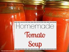 It's almost that time of year again… The time when we can warm up at lunch with a grilled cheese sandwich and a bowl of tomato soup! Easy Homemade Tomato Soup, Tomato Soup Recipes, Fresh Tomato Soup, Tomato Basil, Canning Tomato Soup, Canning Tomatoes, Stewed Tomatoes, Food Storage, How To Can Tomatoes