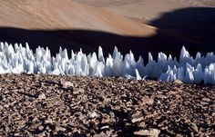 Penitentes, spiky snow that forms at high altitudes.