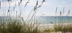 30A - Beaches of South Walton