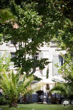 Beautiful private #Bastide for your #destinationwedding or #elopement. Ask for availibility on www.muriel-saldalamacchia.com. Here a slight view of the garden in #june