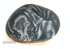 Hand painted dogs on stone, animal portrait rocks. Pebble Painting, Pebble Art, Stone Painting, Painting & Drawing, Rock Painting, Labrador Noir, Black Labrador, Glow Rock, Hand Painted Rocks
