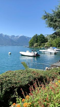 Swiss Riviera 🇨🇭 Best Of Switzerland, Places In Switzerland, Beautiful Places To Visit, Cool Places To Visit, Summer Photography, Travel Photography, Walking Holiday, Journey, Top Place