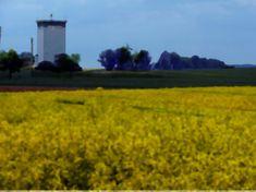 Felder, Vineyard, Country Roads, Outdoor, Kunst, Outdoors, Vine Yard, Vineyard Vines, Outdoor Games