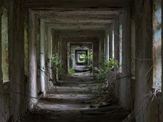 Matt Emett | Return to nature | The long central corridor at an old military hospital, last used during the early 90's to treat RAF patients and US casualties flown back from the 1st Gulf War. The 25 years that have followed have seen the site returning to nature, as water ingress and foliage invade through the gaps and windows. Places like this remind me that she always prevails and nothing we create can ever stand up to her and the passage of time.