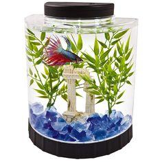 Lovely Tetra Led Half Moon Betta Aquarium Fish Tank 29049