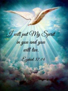 Jesus Christ is Lord: i will put my siprit in you and you will live Biblical Quotes, Bible Verses Quotes, Religious Quotes, Bible Scriptures, Faith Quotes, Spiritual Quotes, Faith Prayer, God Prayer, Faith In God