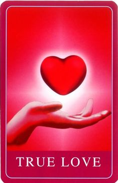 Manifestation Miracle: The Secret For Manifesting Wealth Happiness Love & Success Angel Guidance, Spiritual Guidance, Spiritual Wisdom, Prayer Signs, Signs From The Universe, Novena Prayers, Tarot Card Meanings, Law Of Attraction Affirmations, Angel Cards