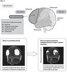 Развитие префронтальной области головного мозга Brain Training, Book Lists, Self Improvement, Education, Books, Livros, Brain Games, Livres, Book