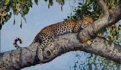 Female Leopard Acrylics on board Wildlife Art, Acrylics, Paintings, Female, Board, Animals, Animales, Paint, Animaux