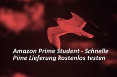 Amazon bietet für Studenten die spezielle Prime Mitgliedschaft Amazon Student an. Hier gibt es für ein Jahr auch eine kostenlose Test-Mitgliedschaft.