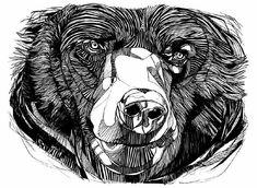 BEAR NO.4 - Luke Dixon Artist
