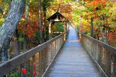 The Talladega National Forest is home to Cheaha State Park, and Cheaha State Park is home to...