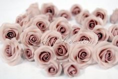 Blooming white wooden roses express everlasting love - love stronger than death, an eternal love. Wooden Roses, Everlasting Love, 2 Colours, Bloom, Create, Flowers, Pink, Garden, Garten
