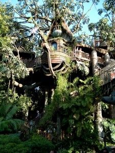 Tarzan's Treehouse, Disneyland, CA. Photographed by Wiki user 'SolarSurfer', 2009.