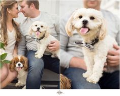 Puppy #love .. See more of this beautiful engagement shoot featuring these two adorable pups - on my blog :-) http://ift.tt/1qP9lvE Link in bio jayekogut.com