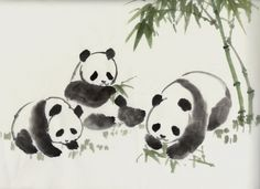 chinese brush painting - Google Search Panda Painting, Sumi E Painting, China Painting, Watercolor Paintings, Watercolors, Chinese Brush, Chinese Art, Japanese Painting, Japanese Art