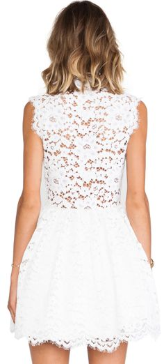 Alexis Antilles Scalloped Detail Lace Dress in Ivory