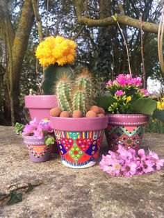 Planter for cactus / Succulents hand painted. The varnish finish. Planter for cact Small Cactus Plants, Small Flower Pots, Mosaic Flower Pots, Clay Pot Projects, Clay Pot Crafts, Painted Plant Pots, Painted Flower Pots, Potted Lavender, Flower Pot People