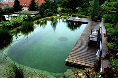 Awesome Natural Swimming pools by Whole Water Systems in Seattle, WA Swimming Pool Pond, Natural Swimming Ponds, Natural Pond, Backyard Retreat, Backyard Landscaping, Pool Picture, Backyard Water Feature, Dream Pools, Cool Pools