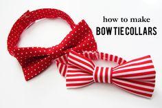 diy bow tie dog collar