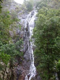 Kondalilla Falls Queensland