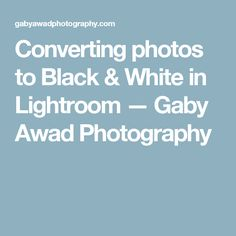 Converting photos to Black & White in Lightroom — Gaby Awad Photography