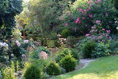 All you need.... - Ein Schweizer Garten