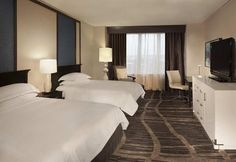 World Hotel Finder - Hilton St Petersburg Bayfront
