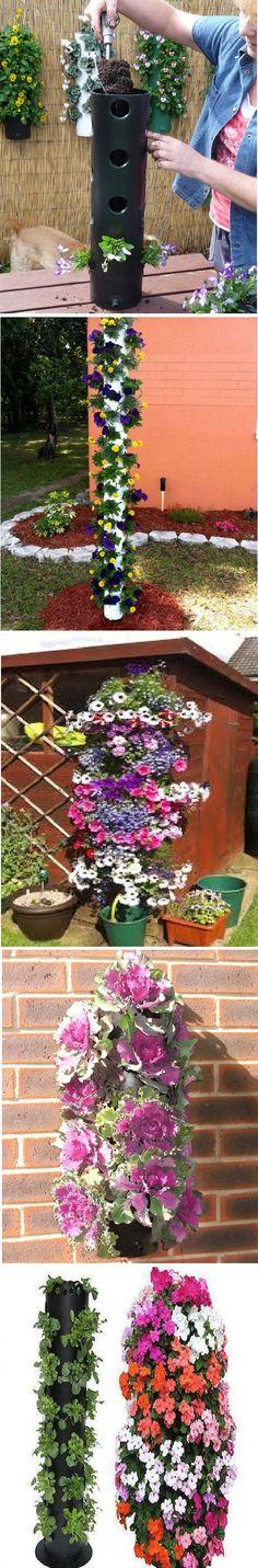 ถ้าคุณสนใจเกี่ยวกับ จัดสวน ลองดูพิน จัดสวน ที่กำลังมาแรงในสัปดาห์นี้…