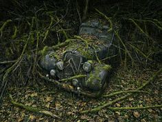 Cars reclaimed by nature...accidently discovered by a photographer doing a magazine shoot.