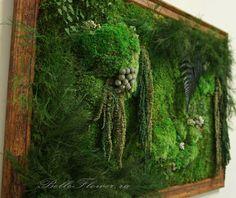 Moss Art, Garden Living, Growing Herbs, Character Design Inspiration, Beautiful Gardens, House Plants, Outdoor Blanket, Living Walls, Vertical Gardens
